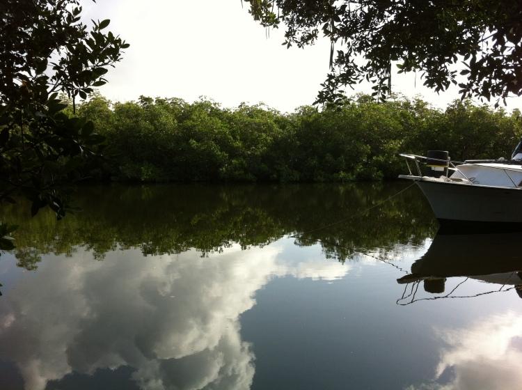 Crocodile Lake National Wildlife Refuge Florida Keys